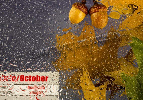 Fotografie de toamna cu picaturi de apa pe geam, frunze uscate si calendar
