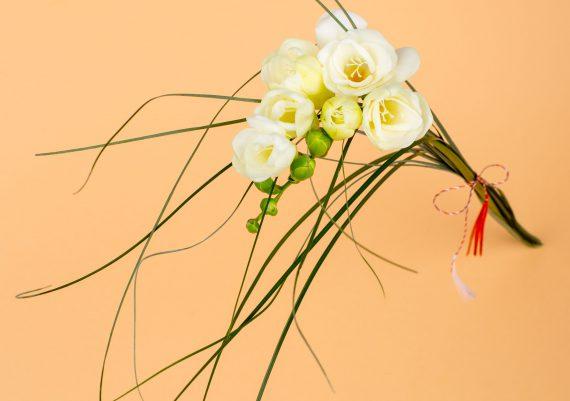 fotografie cu flori de martisor